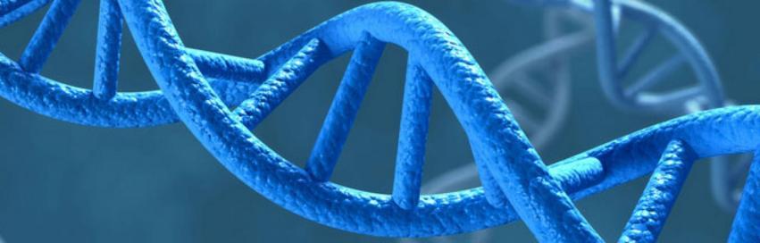 De l'ADN tumoral circulant dans le sang